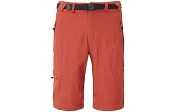Шорты The North Face Men's Paseo